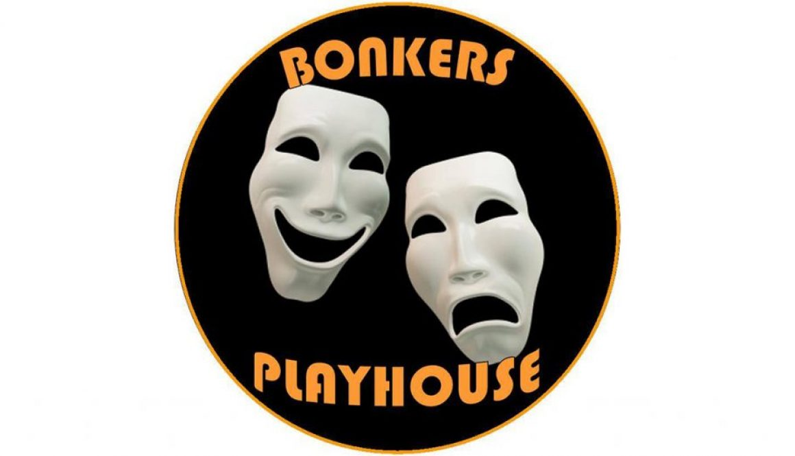 Bonkers Playhouse Play Theatre Kettering