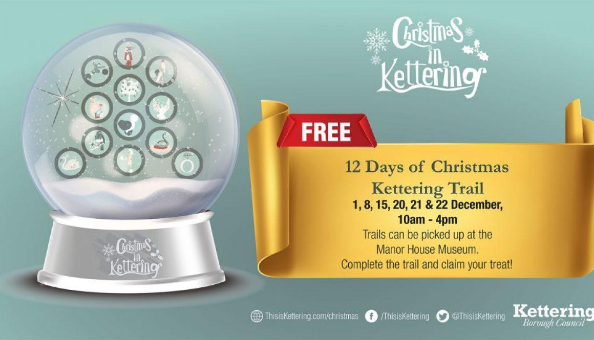 Social Media 12 Days of Christmas