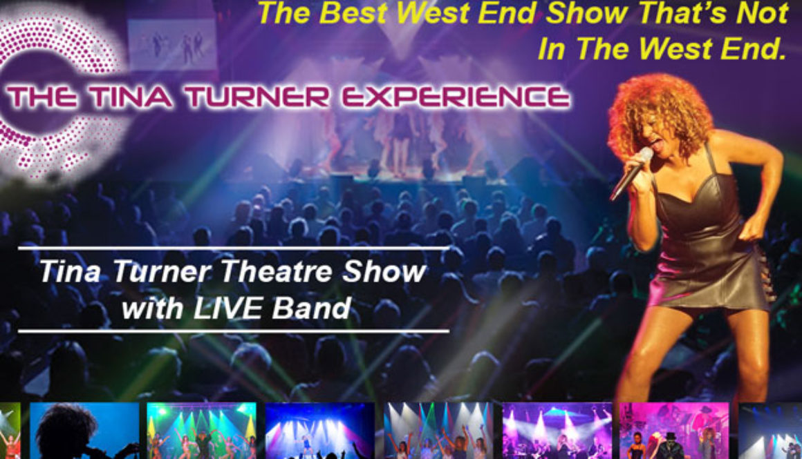 The-Tina-Turner-Experience