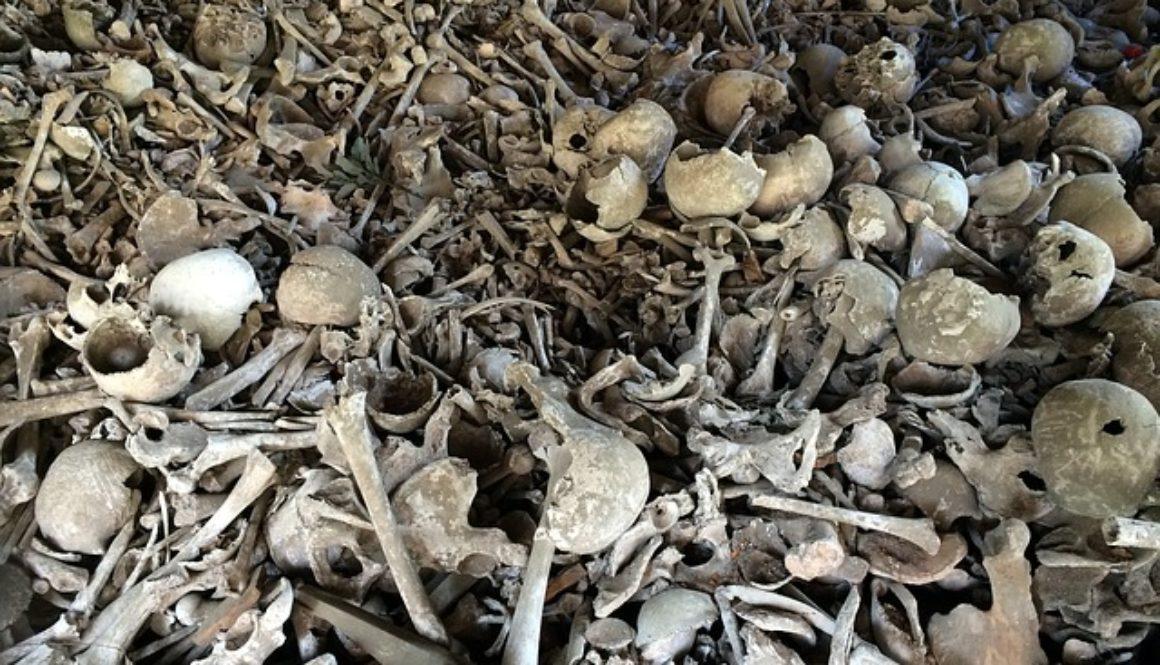 bone-664596_640