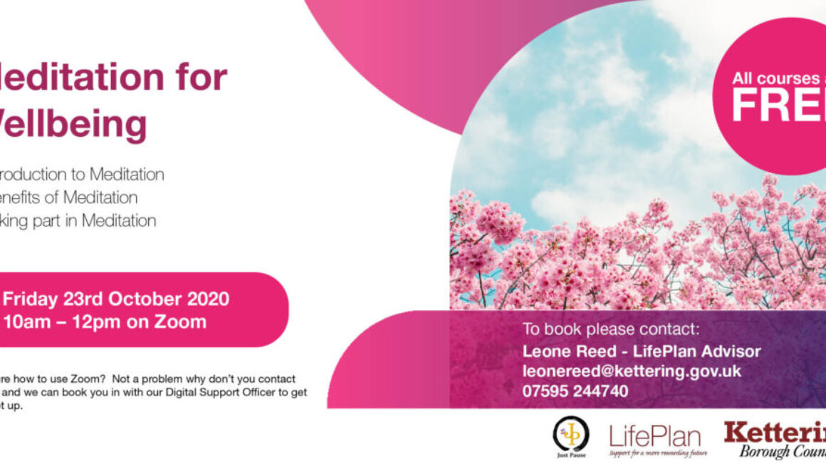 Life Plan Zoom sessions Social Media2